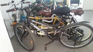 Bike bike bike bicycle bicycle bicycle MTB mtb mtb mountain bike mountain bike mountain bike