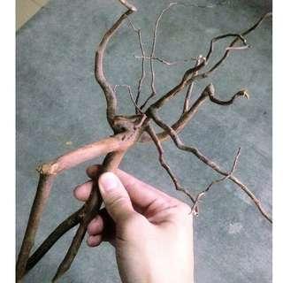 bonsai driftwood for aquarium gardening tools ornaments