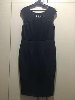 Dorothy Perkins Dress BNWOT