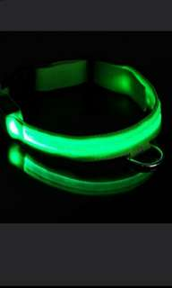 LED Lighted Collar for Small Dogs