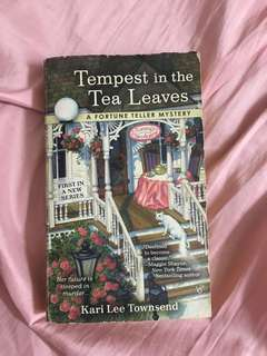 Tempest in the tea leaves a fortune teller mystery