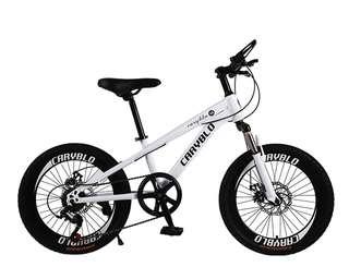 """20"""" premium X mountain Bike kids bike white colour"""