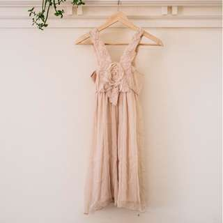 Vintage Chiffon Rose Dress