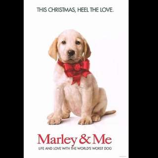 [Rent-A-Movie] MARLEY AND ME (2008)