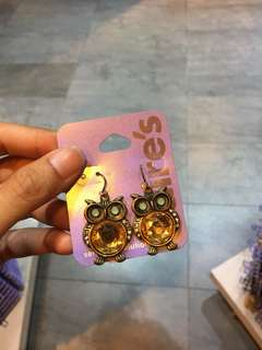 Anting owls