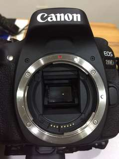 🚚 CANON EOS 80D (Body Only)