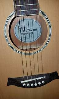 FV-STEVENS PRO SERIES GUITAR
