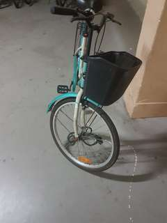 Adult city Bicycle