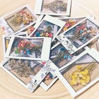 Floral Polaroids