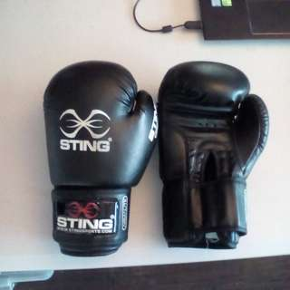 Sting 10oz Boxing Gloves (barely used)