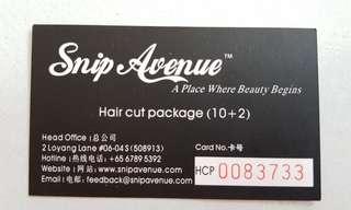Snip avenue card