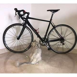 Polygon Helios bike for sale. Fast deal!