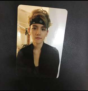 EXO Growl ver B Baekhyun photocard