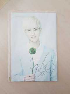 SUHO OFFICIAL nature republic merch