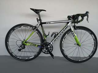 Cannondale Evo HM team size 48