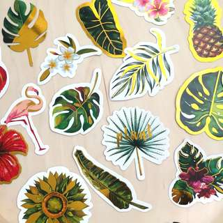 Tropical plants and animals Stickers 24pieces 熱帶雨林 贴纸 24 張