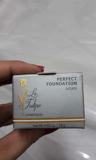 Perfect foundation (3)