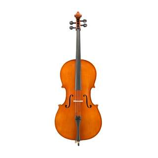 Andreas Eastman VC200 Cello