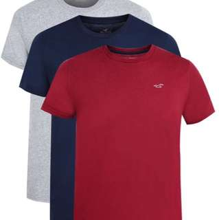 Hollister HCO 海鷗男款短袖T恤