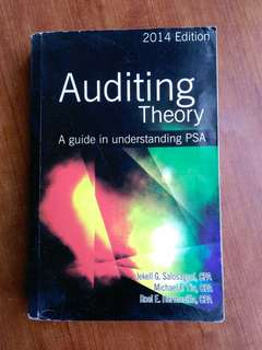 Auditing theory Salosagcol