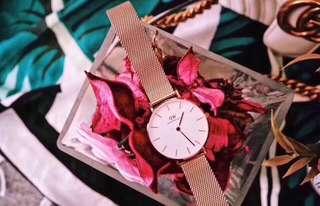 Daniel Wellington DW 28mm white rose gold Petite watch