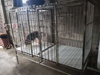 Stainless Dog Cage