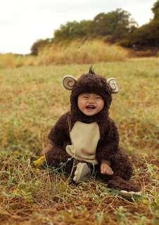 Baby Monkey/ Gorilla Costume