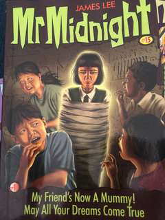 Mr Midnight by James Lee