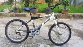 Sepeda MTB Aleoca Detona DX