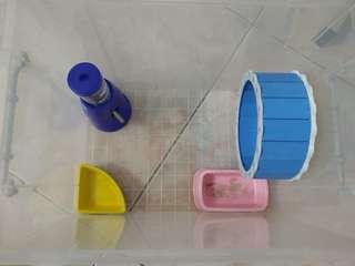 (免運)鼠鼠收納箱附無塵實驗室草.沙浴.鼠球.圖中看到的所有東西