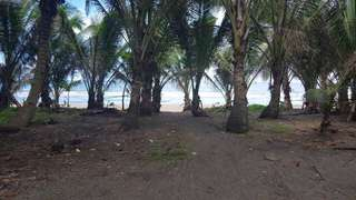 Affordable beach lot beach resort investment