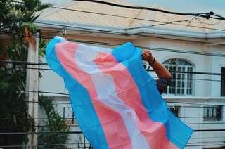 Transgender Pride Flags 🌈
