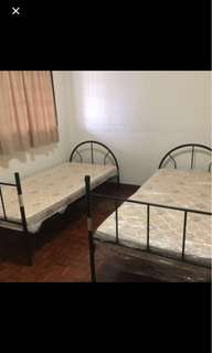 1 available room sharing for male