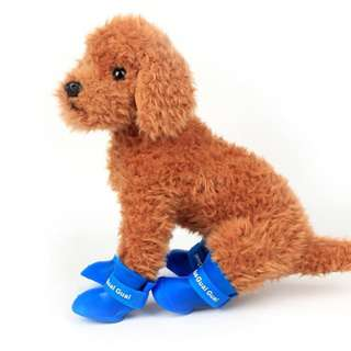 Dogs' Shoes
