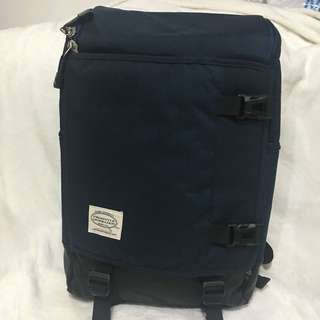 Freestyle laptop backpack