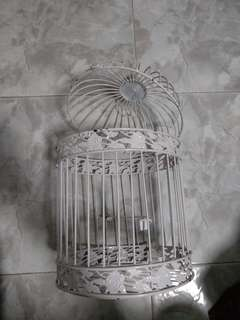 Bird cage for art display