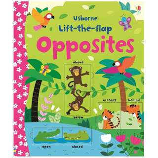 Usborne: Lift-the-flap opposites