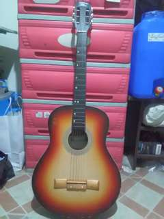 Guitar with Bag and Capo