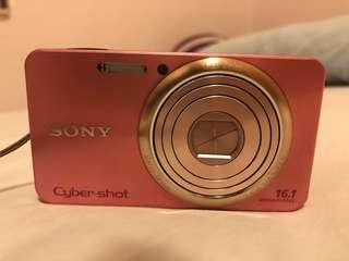 Sony Cybershot DSC-W570 數碼 相機 平