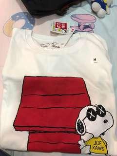 Snoopy kaws