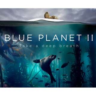 [Documentary] Blue Planet II (2017) Complete