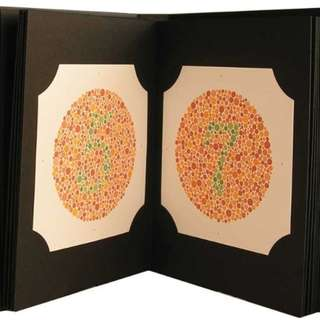Ishihara 38 Plate Color Blindness Test - NEW