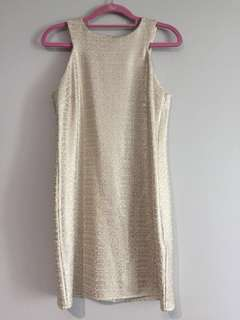 (NEW) Dorothy Perkins Nude Shimmery Silver Dress (Size S)