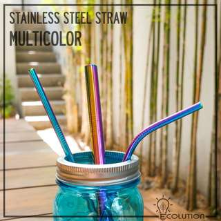 Stainless Steel Straw MULTICOLOR