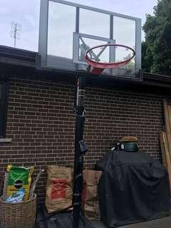 Reebok basketball net