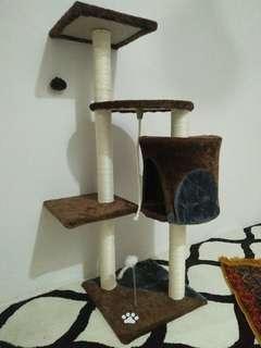 Cat Scratcher/Cat Tree