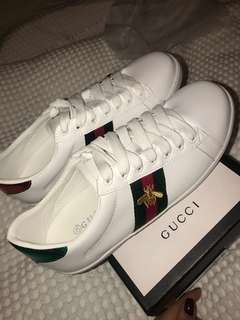 Gucci bee sneaker brand new with box