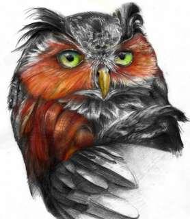Tattoo, flash, drawing