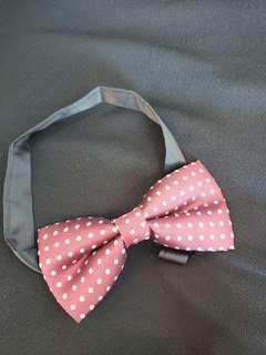 Bow Tie 煲呔 紅色底白色波點