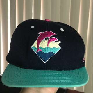 Pink Dolphin Snapback